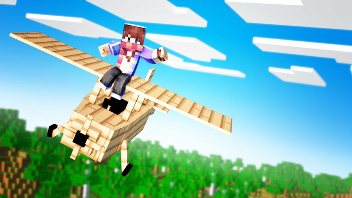 Purpose of Minecraft servers